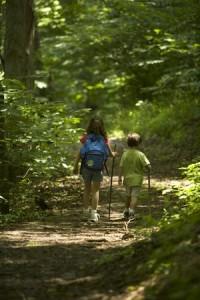 children hiking in forest
